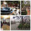 اجاره روزانه  و هفتگی باغ ویلا در شهریار
