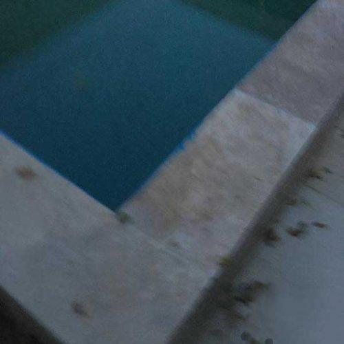 اجاره باغ ویلا استخر دار در باغستان شهریار